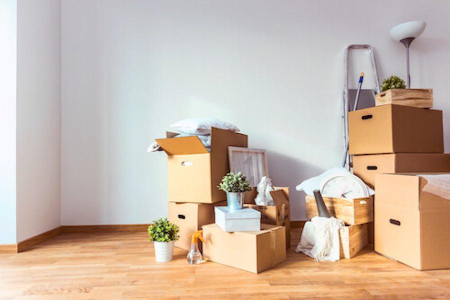 Un cuento para cambiarse de casa: Caracolillo